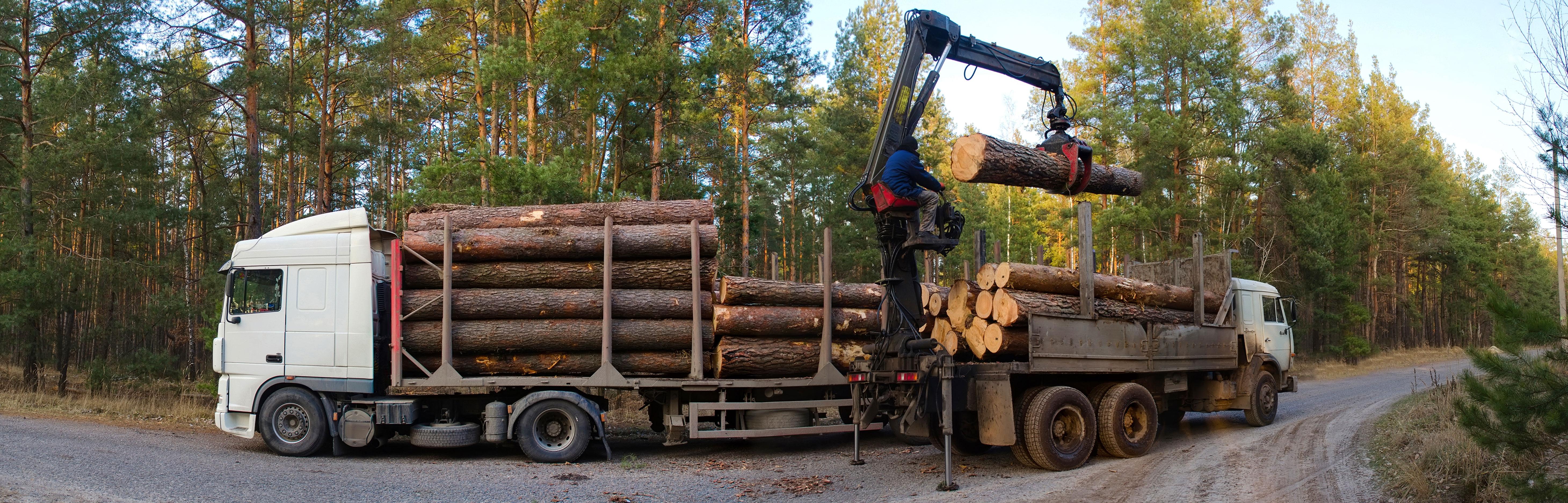 materiel forestier bourgoin jallieu